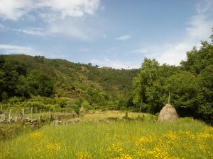 Campos de Sistelo