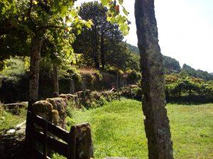 Caminho do Lourinhal